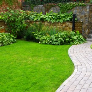 These landscaping tips can help you save money when it comes to lawn care and landscaping maintenance!