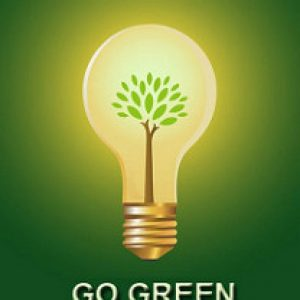 sustainable business go green lightbulb