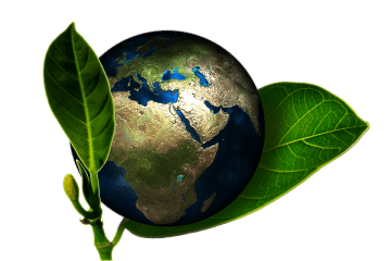 Going Green: The Time is Now