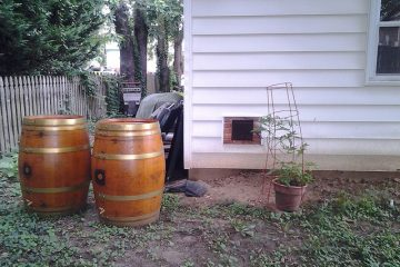 Easy Rainwater Harvesting: Rain Barrels