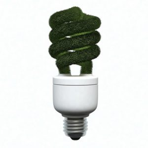 Going green can be a simple property rental improvement tip!