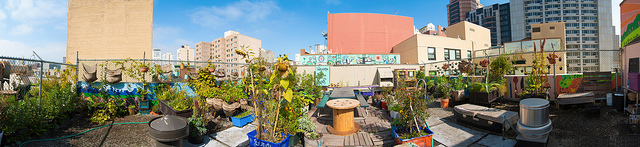 This beautiful on-site restaurant garden is great for business and even better for the environment!
