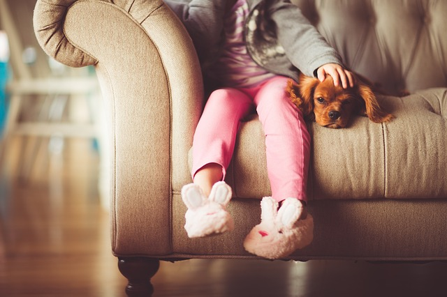 A little girl sits on a couch with bunny slippers, petting a puppy laying next to her.