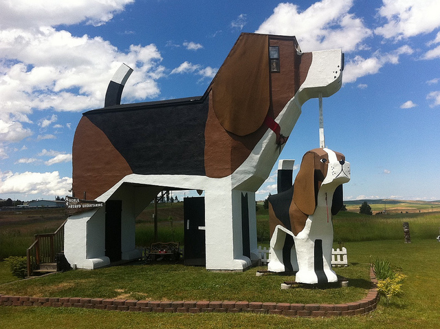 The Dog Bark Park Inn is unique in many ways - the structure of the Inn being only one feature that makes this a quirky hotel