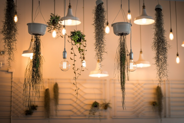 Hanging greenery as restaurant decor is a great way to create a fresh, welcoming ambiance in your restaurant